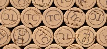 Blog. O vinho que veio do montado para as bocas do mundo